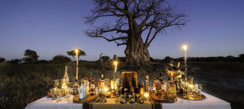 Botswana Okavango Delta Mombo Camp by Dana Allen