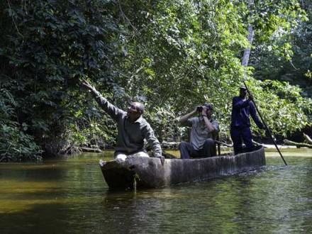 Lekoli River Odzala-Kokoua Congo