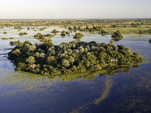 Okavango Delta Island