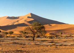 Anciet Namibia Desert