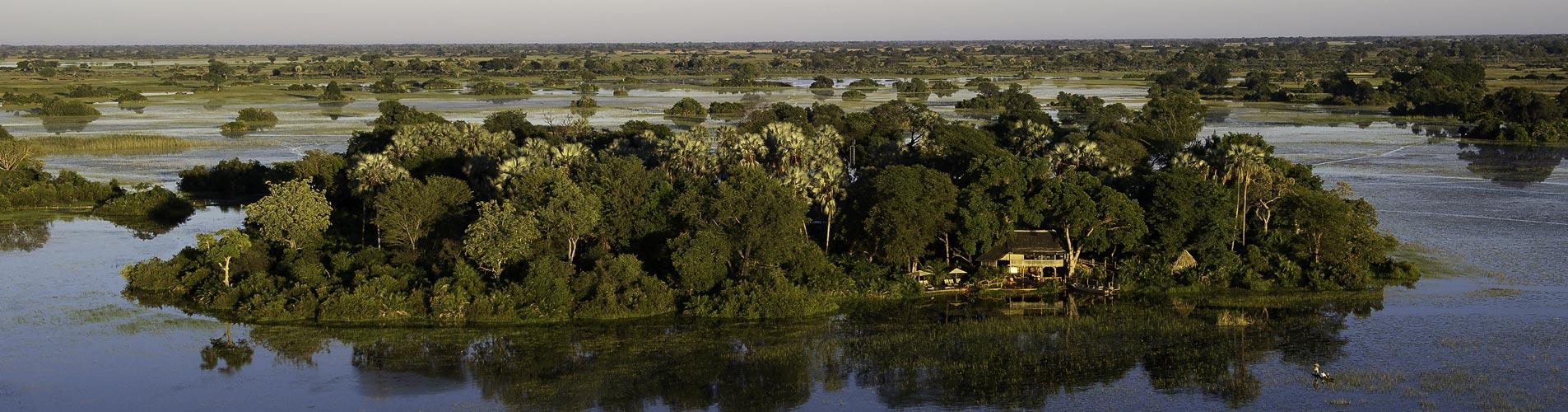 Botswana Safaris Jacana
