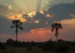 Breath Taking Sunsets In The Okavango