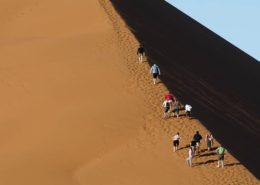 Climbing The Namib Sand Dunes