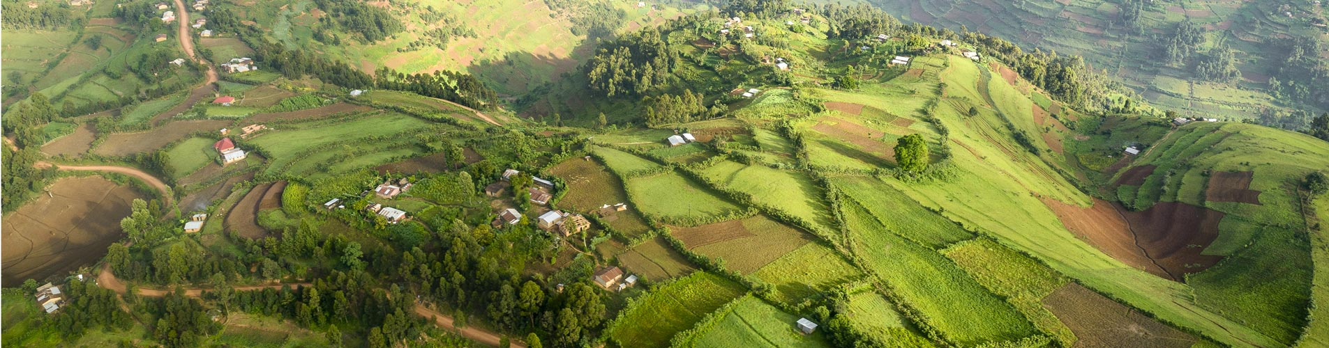 Rwanda Safaris Fertile Valley