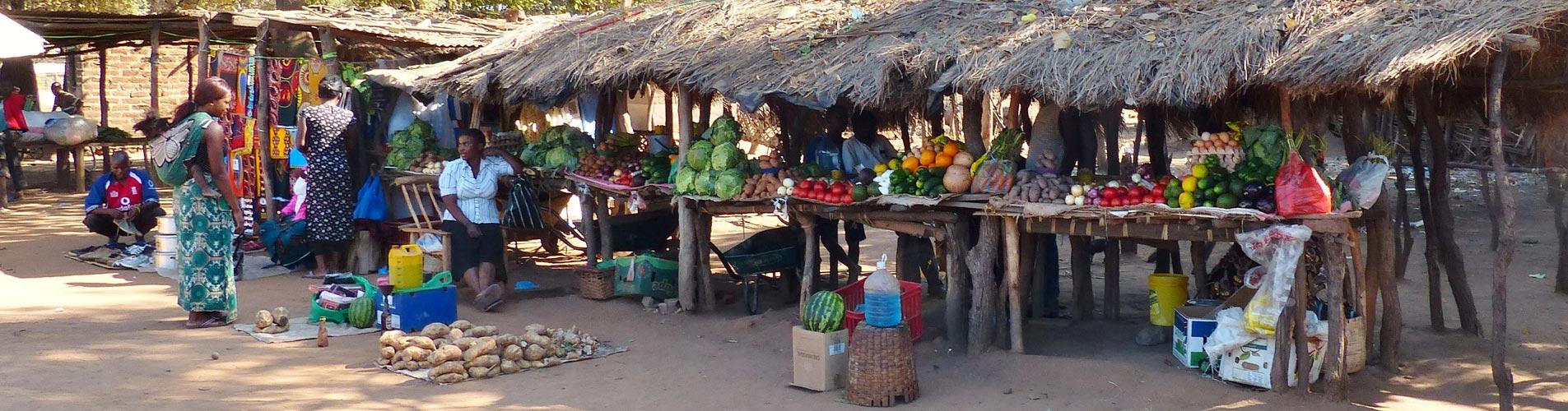 Mfuwe Village