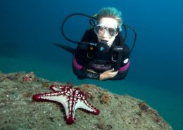 Mozambique Diving Experiences