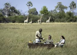 Okavango Private Dining Safari