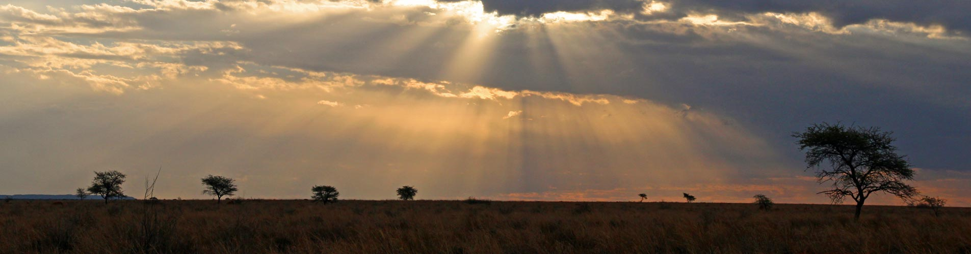 Photo Safari Workshops, Dramatic Plains
