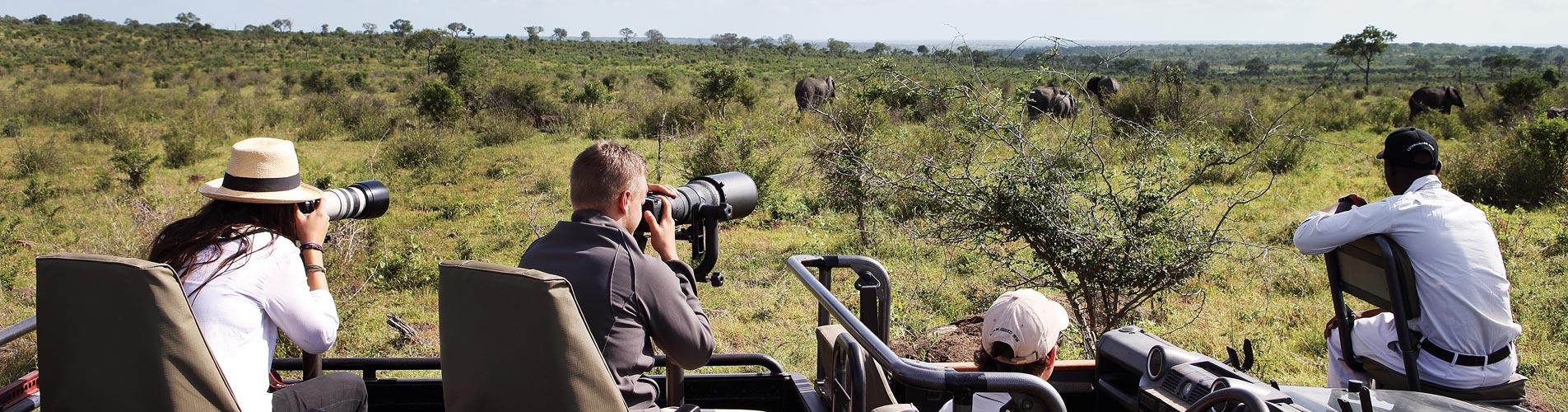 Photographic Safari Workshops at Londolozi