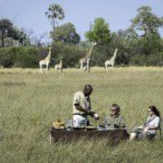 African Safari Cost