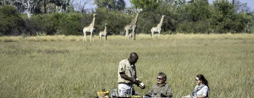 What Will a Safari Cost Me? | Explorations Africa
