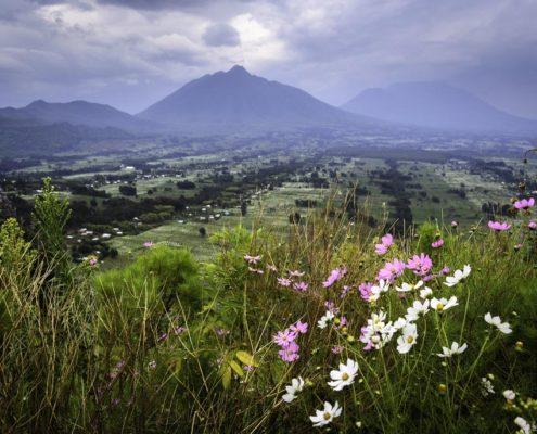 Rwanda Scenery