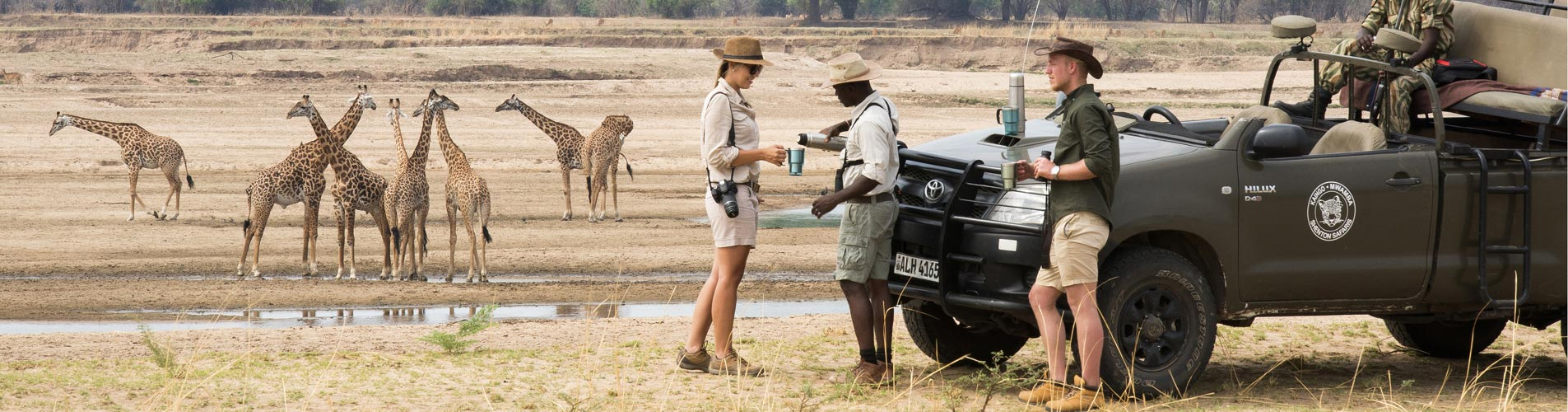 Tea With Giraffes on Zambia Safari