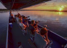 The Pangolin Photo Boat Experiences